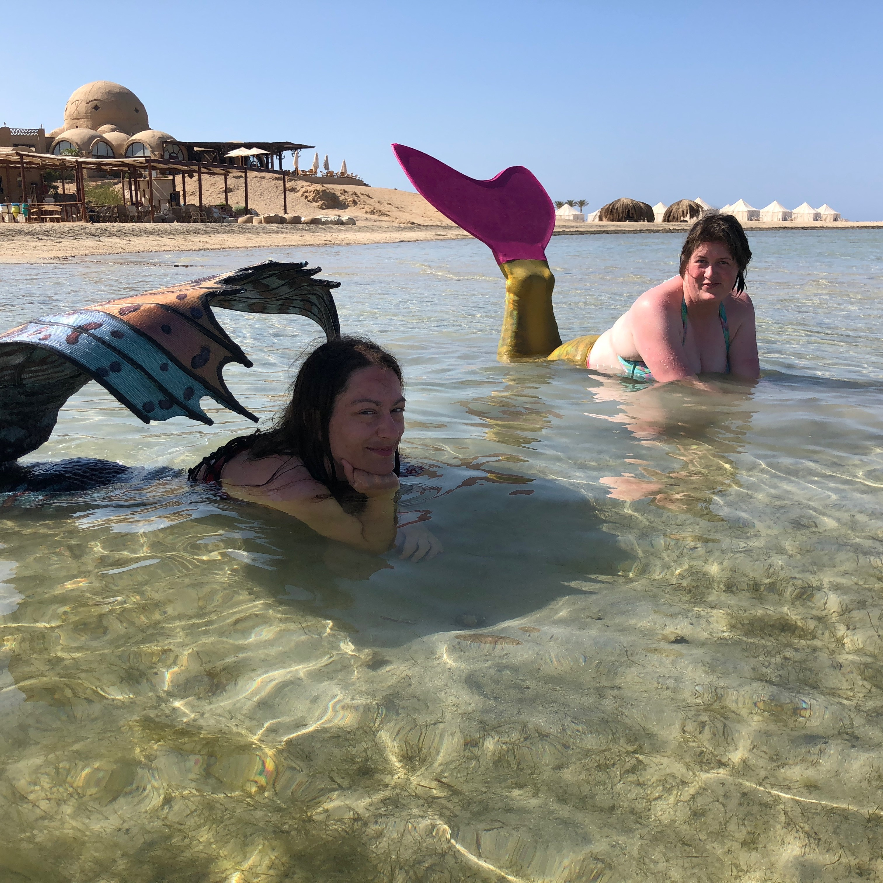 Play and pose in the shallows of the Red Sea in Egypt